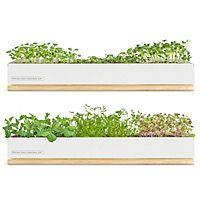 Very cool micro greens