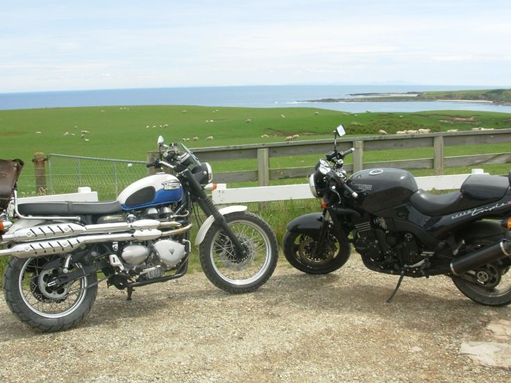 One of the coolest things about road trips is who you meet. Our Triumph Scrambler has just made a new friend.
