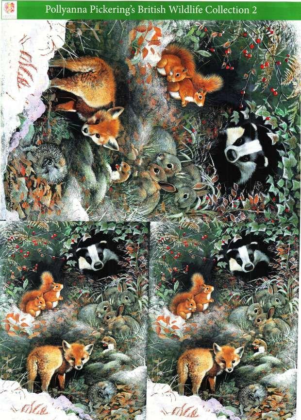 Pollyanna Pickering British Wildlife Collection 2