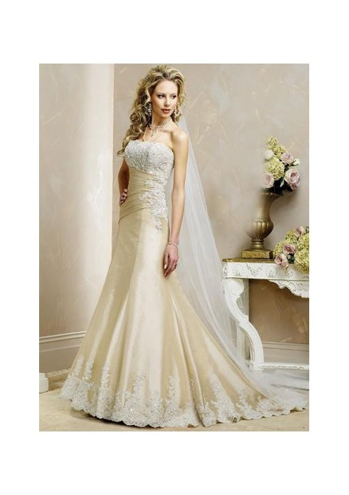champagne colored wedding dresses would love it in pink or pink and champagne.