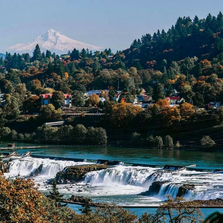 End of the OR Trail. Oregon City. Willamette Falls w/Mt Hood in the distance. It is the largest waterfall in the PNW by volume, and the 17th widest in the world. Horseshoe in shape, it is 1500' wide and 40' high w/ a flow of 30,849 cu ft/s; located 26 mi upriver from the Willamette's mouth on the Colombia R. Wikipedia