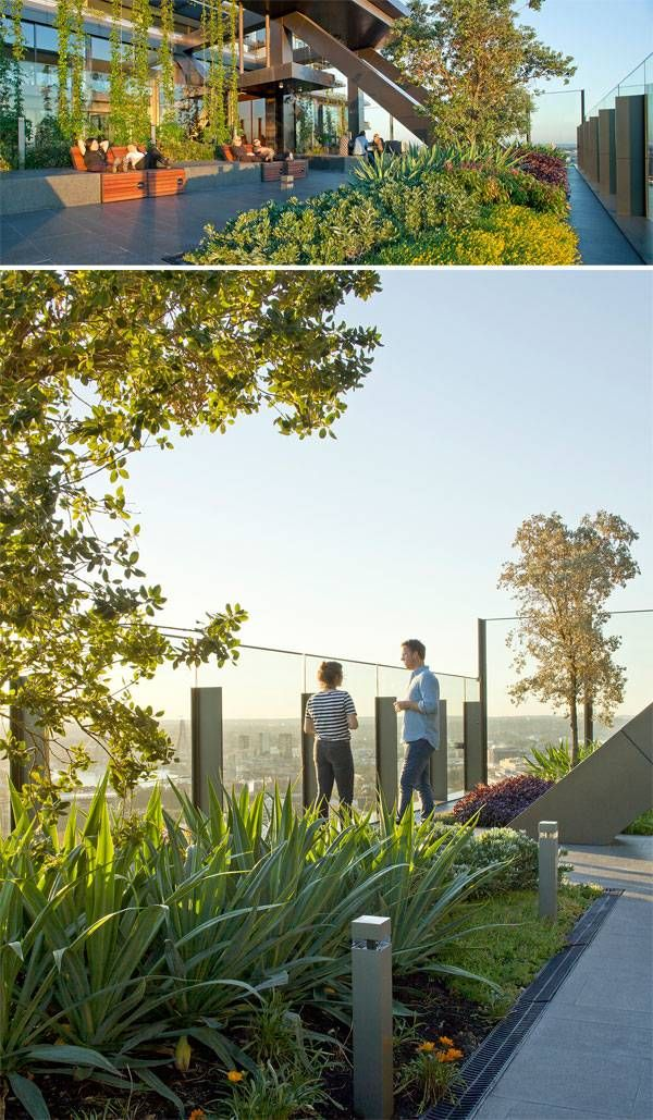 One central park by aspect oculus in sydney australia for Aspect landscape