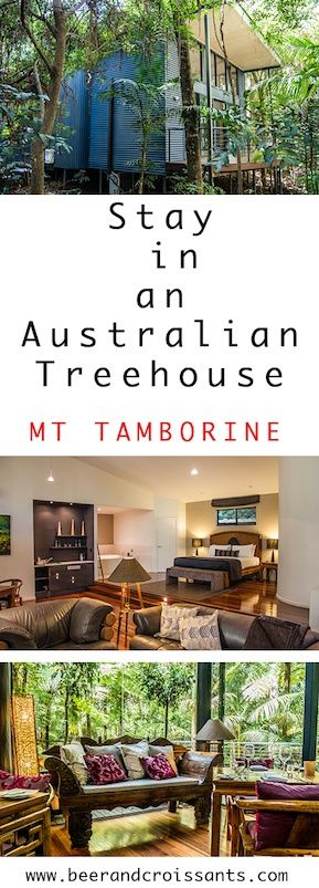 Looking for unique Mt Tamborine accommodation? Don't stay in an average location. Head to Pethers Rainforests Retreat for the peace & tranquillity of sleeping in a quintessential Australian treehouse under a rainforest canopy. Book early as there are only 10 treehouses on this amazing property.