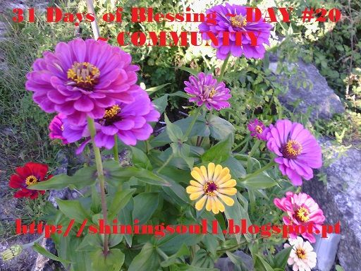 ShiningSoul: Day #20 ~ 31 Days of Blessing: COMMUNITY /  Dia #2...
