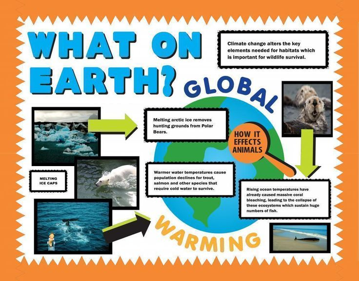 Make a Science Fair Project | Poster Ideas - Global Warming Project | Earth Science Project for Kids