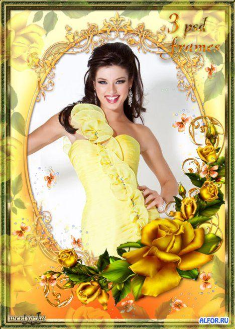 Чудесные золотисто-желтые розы