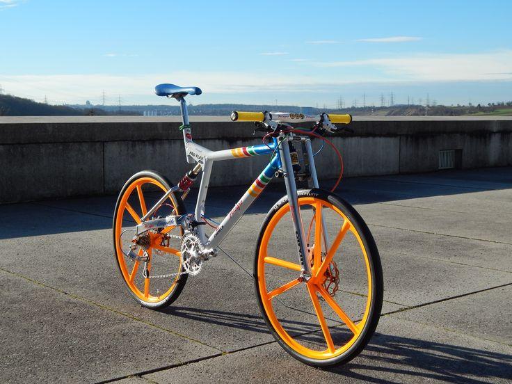 proflex pelagro concept pelagro individual bikes coole. Black Bedroom Furniture Sets. Home Design Ideas