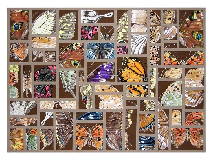 Butterfly Detail: Gouache on Blockingford