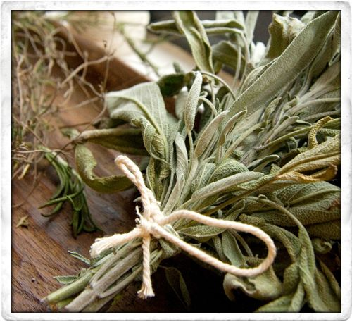 Tip:: Home Dried Herbs: A Few Quick Tips! «   by The Good Mood Food Blog