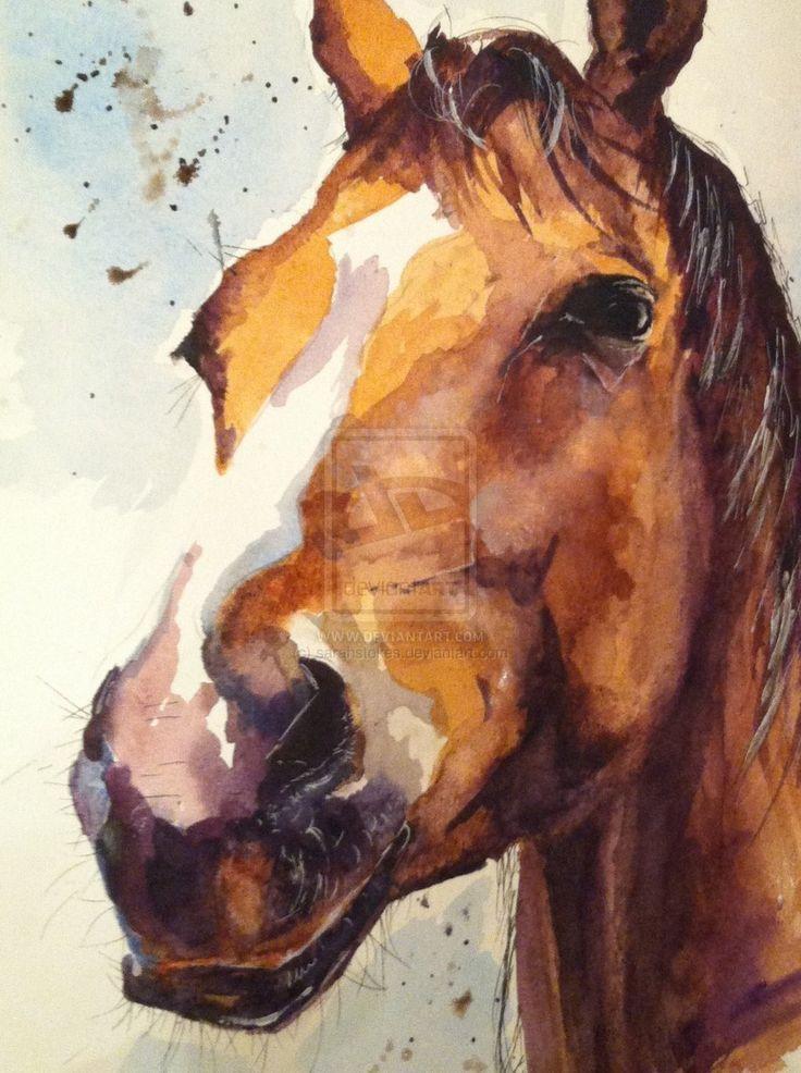 Horse watercolour by sarahstokes.deviantart.com on ...