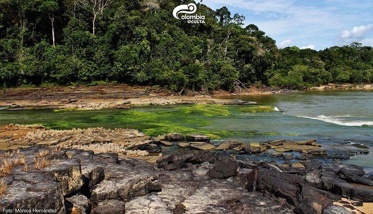 Chiribiquete - Colombia Oculta