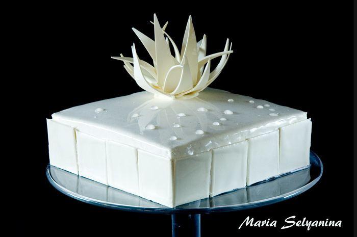 Birthday Cakes Zumbo ~ 7 best zumbo images on pinterest birthday cakes eat cake and