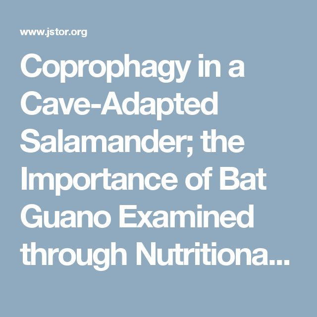 Coprophagy in a Cave-Adapted Salamander; the Importance of Bat Guano Examined through Nutritional and Stable Isotope Analyses on JSTOR