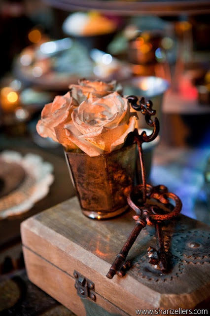 Wedding Dress Steaming Chicago : Best images about theme steampunk wedding on