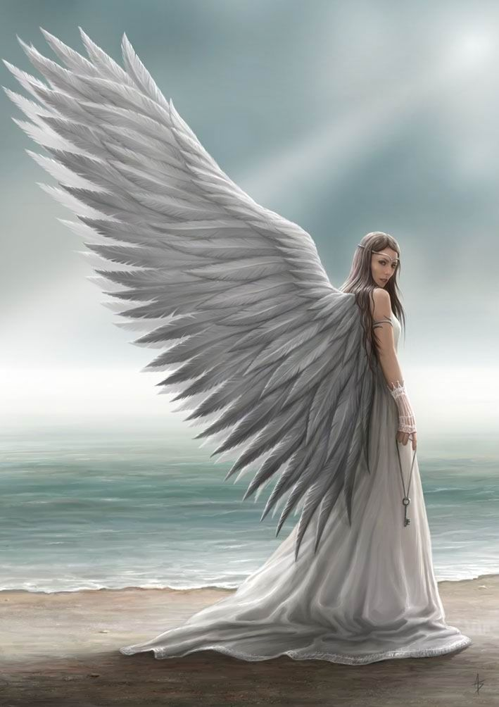 "They were so white against the blue, With such a glory streaming through Their silver fleeces,--we were sure They must at least be angels' wings; And the mere fancy of such things Kept childish speech and conduct pure. -Mary Bradley, ""Angel's Wings"""