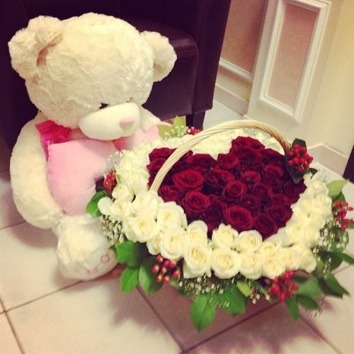 valentines day cute teddy bears