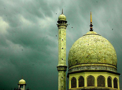 green on green. Kashmir, Pakistan.