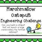 Engineering Challenge:  Can you build a catapult that will launch a large marshmallow the farthest distance?  $