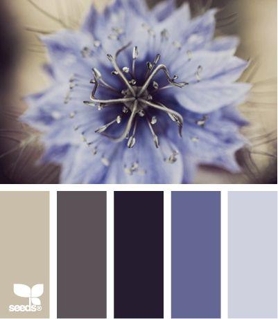 lilás e cinza