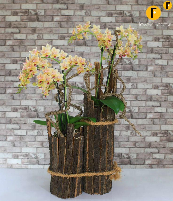 Creatie #Opti-Flor #flowerfactor #tweetjam #kunst #flower #plant #beautiful #Florist #Phalaenopsis #Orchids #Creative #Original