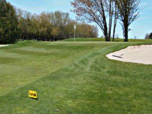 https://rpgolf.wordpress.com/2018/03/07/casselview-plans-to-start-35th-anniversary-year-with-a-specials-bang-at-ottawa-gatineau-golfexpo/