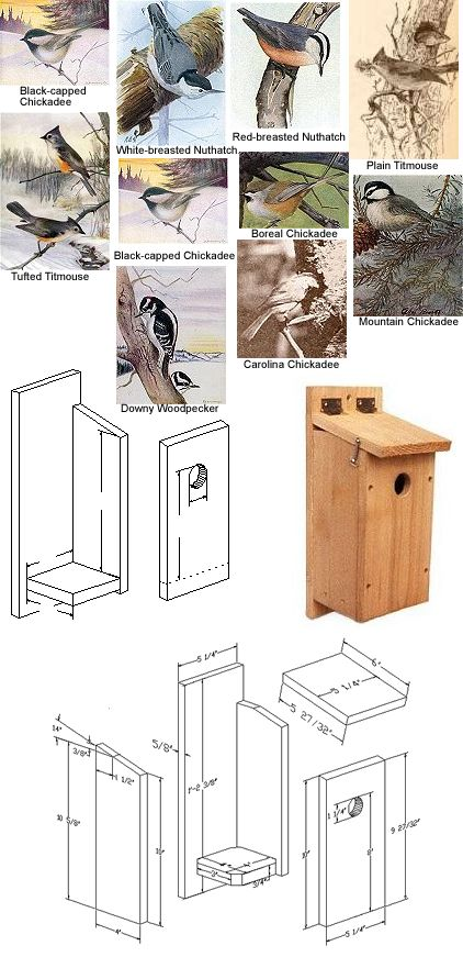 Chickadee, Nuthatches & Titmouse Nesting Box