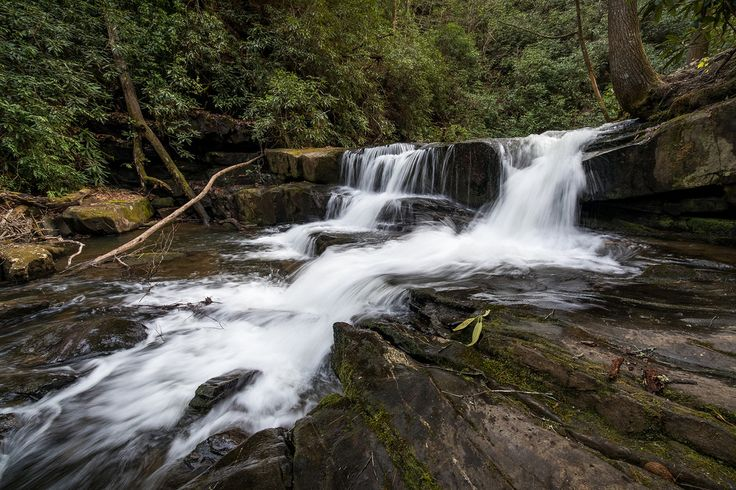 John Cothron posted a photo:  Waterfall on Wildcat Creek near the west side of Lake Burton in Rabun County, Georgia.. Wildcat Creek is located in Rabun County in north Georgia. It flows generally west to east until it empties in Lake Burton along its western side.  There is a well developed campground in the area along Wildcat Creek Road which is the access to the creek in this area. It is stocked annually with rainbow trout and is very popular with fisherman.  (1/10 sec at f/11)  ©John…