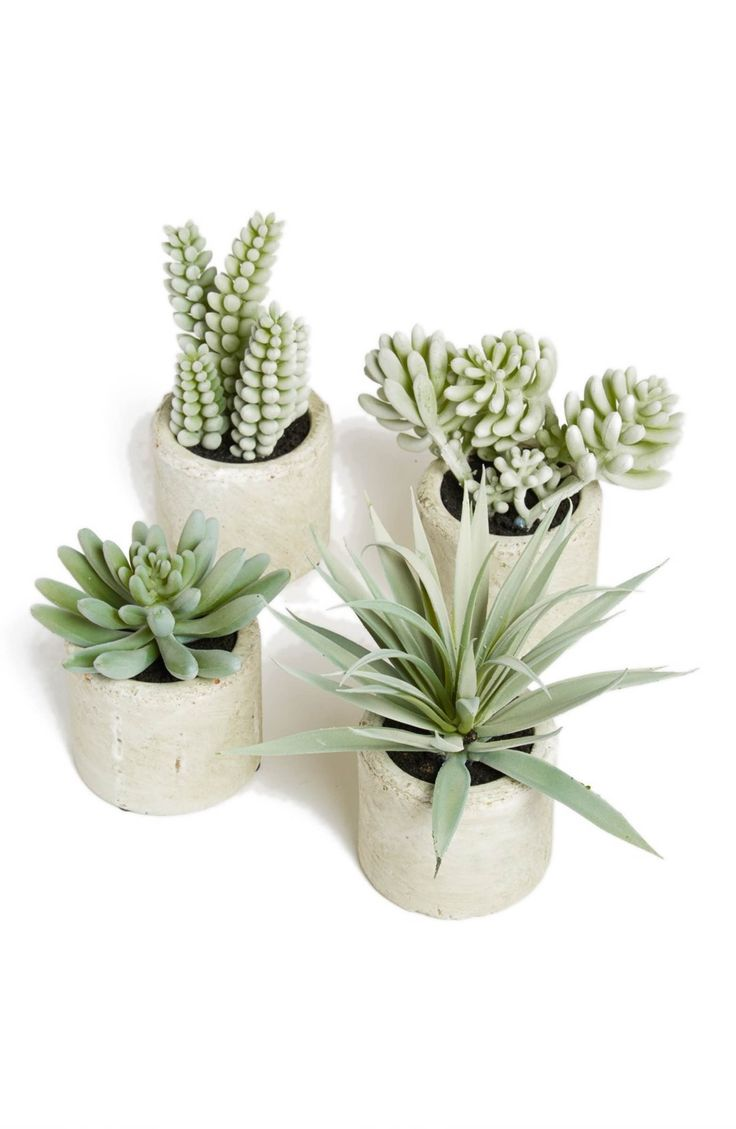 Main Image - ALLSTATE Mini Artificial Succulent