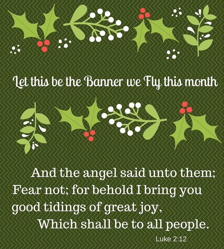"""Let This Verse Be the Banner We Fly In December . . . And the angel said unto them, FEAR NOT; For, Behold I bring you Good tidings of great joy, Which shall be to all people. Luke 2:10 Instead of dreading all the extra demands and jobs this season brings – let's seek a fresh focus on why we """"do what we do."""" Instead of feeling fear when we hear troubling news, let's turn to the Truth of His Word. How can we NOT FEAR this year? Know nothing can ever separate us from God's loving care Trust in…"""
