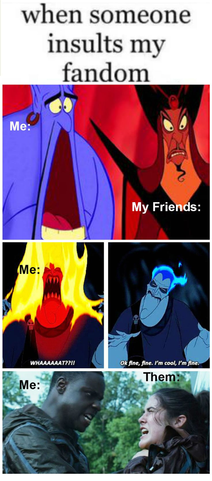 When someone insults my fandom. Going thought the stages: Shock, Rage, and Attack. Some of My fandoms: PJO/HOO/TOA, HP, Lunar Chronicles, Artemis Fowl, Rangers Apprentice/Brotherband Chronicles, THG, TMR, The Selection, TMI/TID, etc. Add your own in the comments