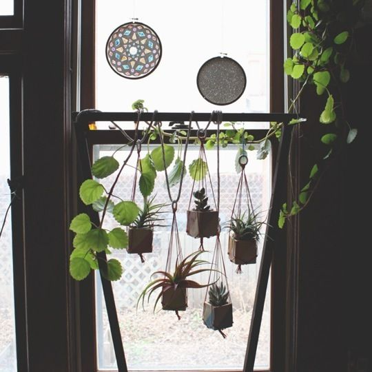 I really want to add plants to my bathroom window and take advantage of the beautiful sunlight from the east, but the toilet is right beside (perpendicular to) the window & I don't want to have plants getting tangled in my hair while I sit.     So I'm seeking solutions for a minimalist way to hang some damn plants