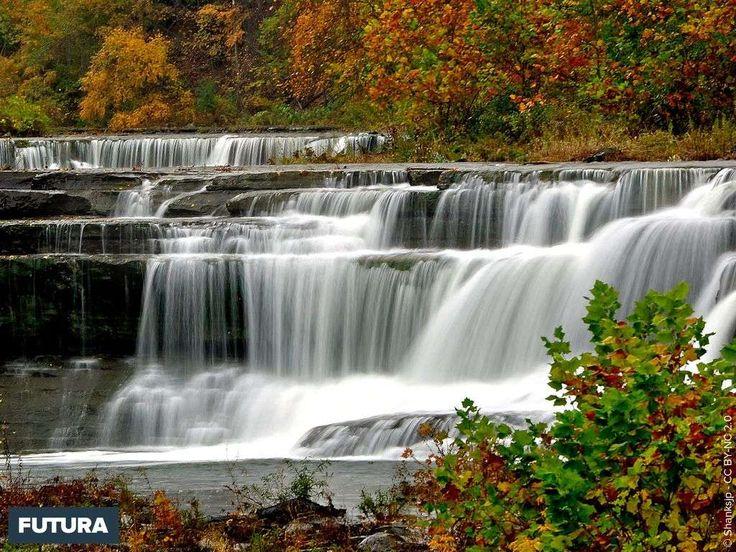 Cascade Forêt d'automne, Foret, Paysages du monde