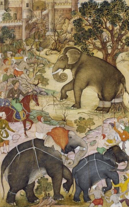 Emperor Akbar inspecting a wild elephant