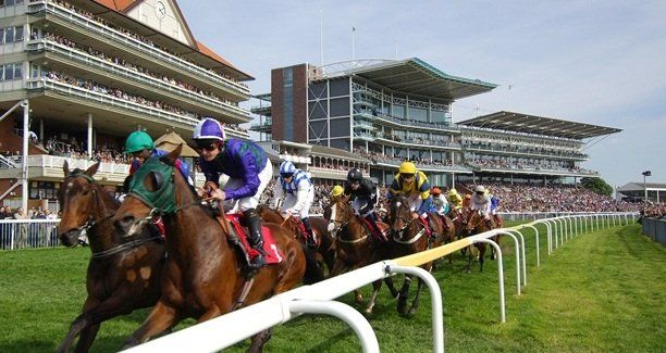 Uk horse betting sites betting sports sites