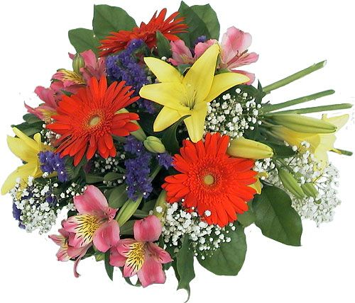 Beautiful Flower Thank You: Canada Flowers > Thank-You Flowers