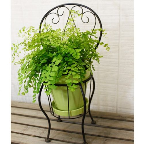 Planters Chairs: Iron Metal Chair Planter Holder