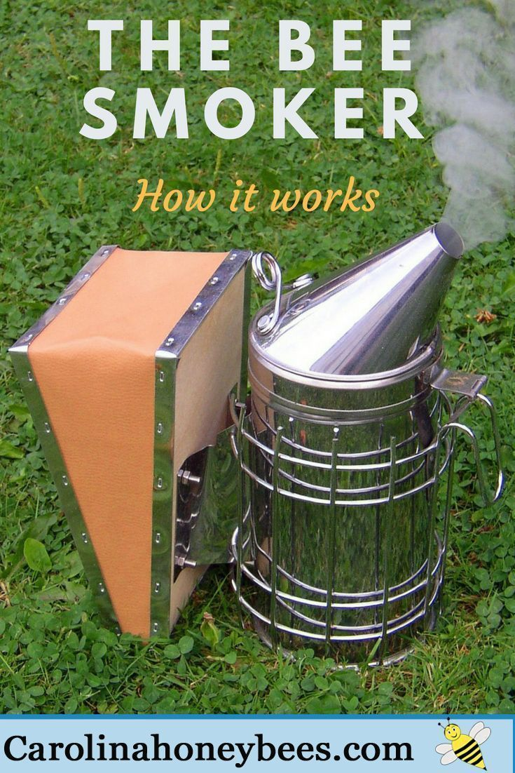 Used properly, a beekeepers smoker can actually save bee lives. Smoke calms the honeybees and lessens an alarm response. via @https://www.pinterest.com/carolinahoneyb #beekeeper #beekeeping