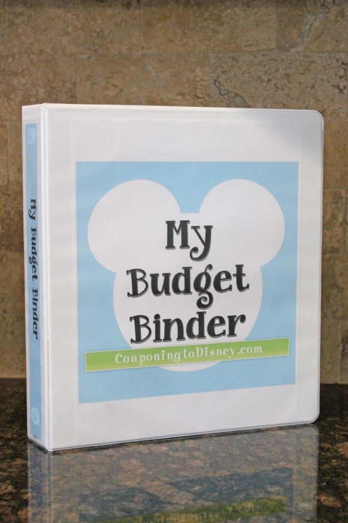 Budget Binder...help with keeping to your budget so you can save for the special things in life...like Disney!