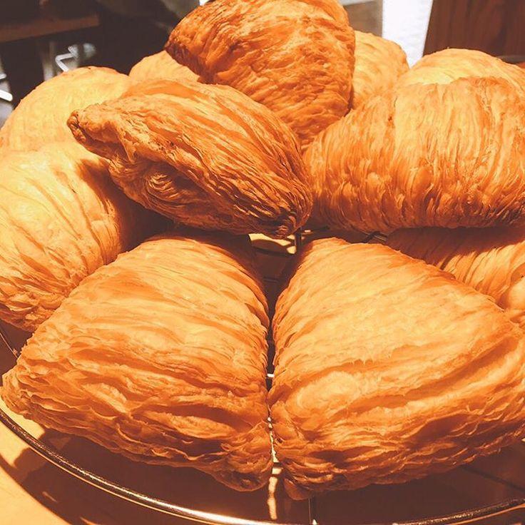 「スフォリアテッラ」は貝殻のような見た目、パイのような層の中にクリームが入ったイタリアのナポリ地方の名物菓子です。バターではなくラードを使用することからバリバリ感が強く、さっくりとした歯ごたえを楽しめます。手作りで作ってみませんか?