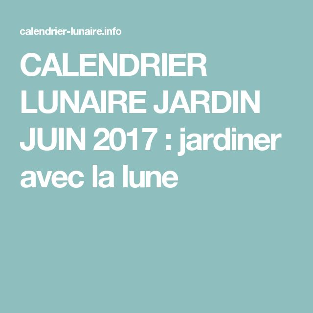 25 best ideas about jardin lunaire on pinterest for Jardiner avec la lune
