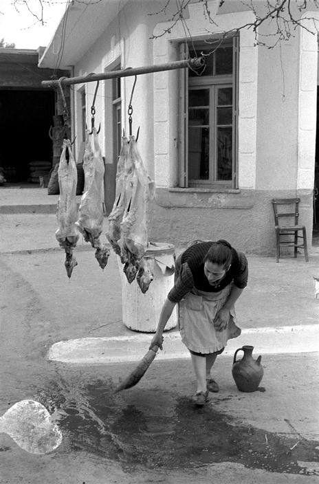 Καθαρίζοντας μετά το σφάξιμο-Κρήτη 1955