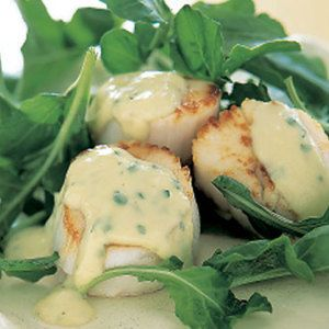 images about Scallops on Pinterest | Seared Scallops, Baked Scallops ...