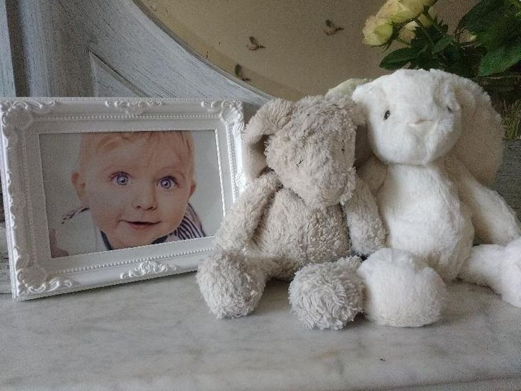 Lost on 25 Jul. 2016 @ Selsdon. Battered but loved white/grey bunny teddy Visit: https://whiteboomerang.com/lostteddy/msg/fs5a3f (Posted by Kasia on 25 Jul. 2016)