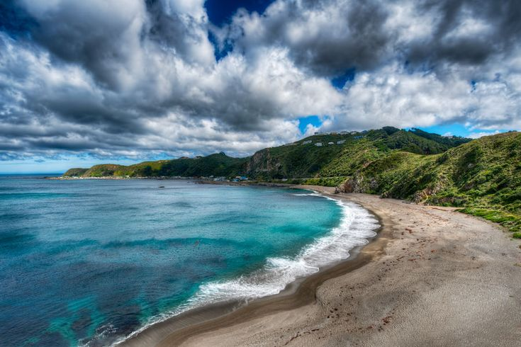 Breaker Bay, Wellington New Zealand
