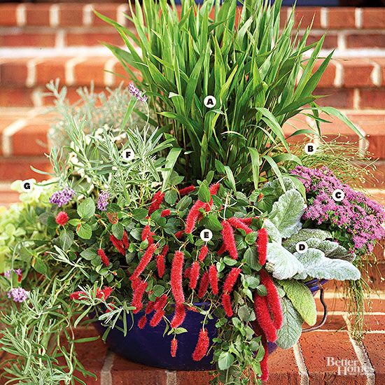 Great Containers for Gardening128 best Container gardening 3 images on Pinterest   Garden ideas  . Gallery Of Beautiful Container Garden Ideas. Home Design Ideas