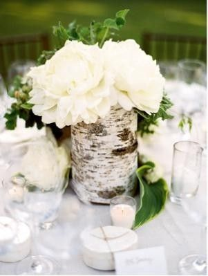 birch centerpiece (cluster 3 of these? or just one per table? w/ magnolia leaves and/or moss at bottom)