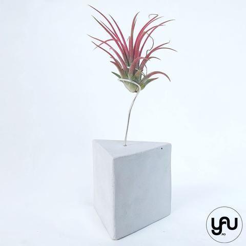 MARTURII plante aeriene in suport turnat GEOMETRIC - M20 - https://www.yau.ro/collections/marturii-nunta-si-botez?page=1 - yauconcept - elenatoader
