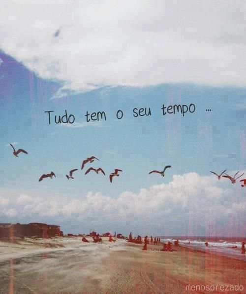 Tudo tem o seu tempo.: Inspiration, Quotes, Your Time, Posts, Summer, Phrases, Beach, Places