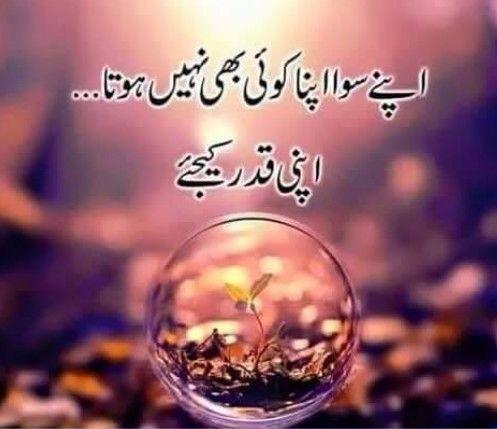pin by alia mustafa on beautiful saying pinterest urdu