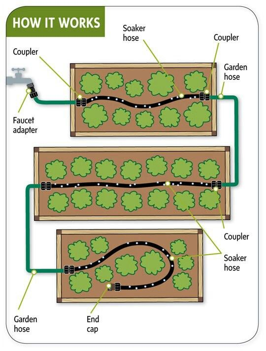 Efficient DIY watering system for garden. Especially great if you start with a faucet attached to a rainwater collection system (barrels, etc.)